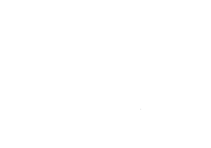 Lionshare Investment Group
