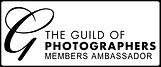 GuildLogo_MembersAmbassador.png