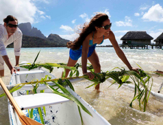 Sofitel Private Island Bora Bora 6.png