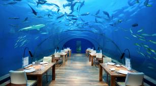 Conrad Maldives 1.png