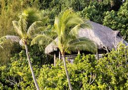 Sofitel Private Island Bora Bora 8.png