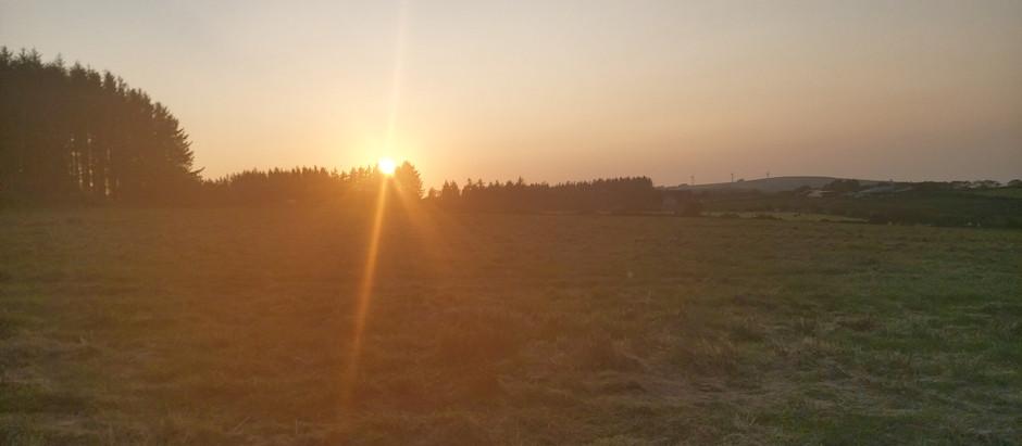 Today's beautiful sun setting