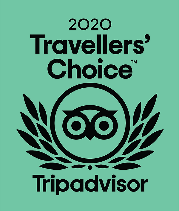 Trip advisor 2020 award.png