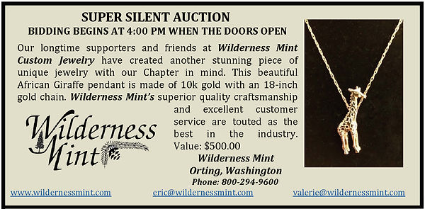 2020 Fundraiser - SUPER SILENT AUCTION -