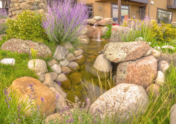 House_2_TW_Back_Water_Feature_2.jpg