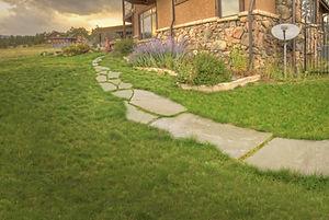 House_2_TW_Back_Walkway.jpg