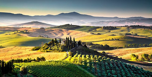 Special offer: Tuscany to Your Home 12 bottles