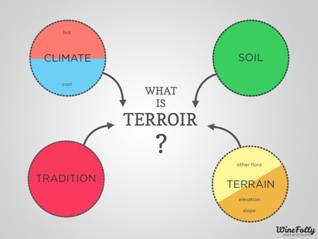 everybody's talking about terroir (but what the hell is it?)
