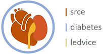 sarce-diabetes-ledvice logo.jpg