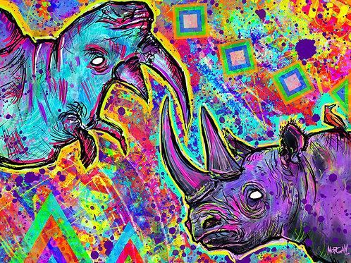 Black & White Rhino