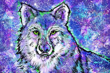 Gray Wolf SMALL.jpg
