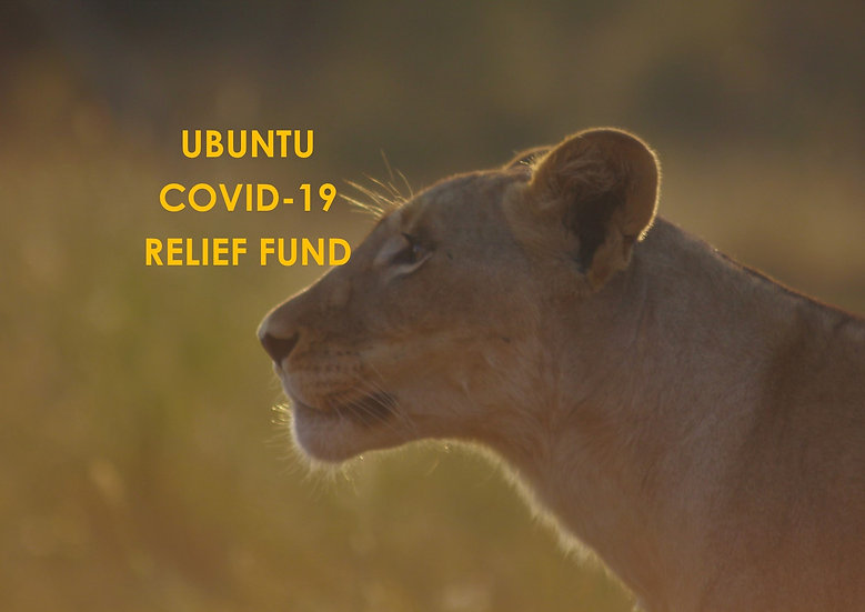 COVID-19 | RELIEF FUND, ANIMAL WELFARE