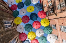 vamos passear de guarda-chuva