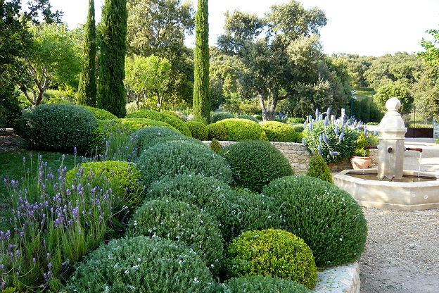 jardin provençale Vertigo Paysage