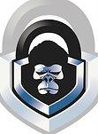 lock monkey dbl image.jpg