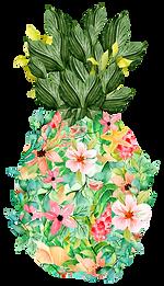 island-pineapple.png