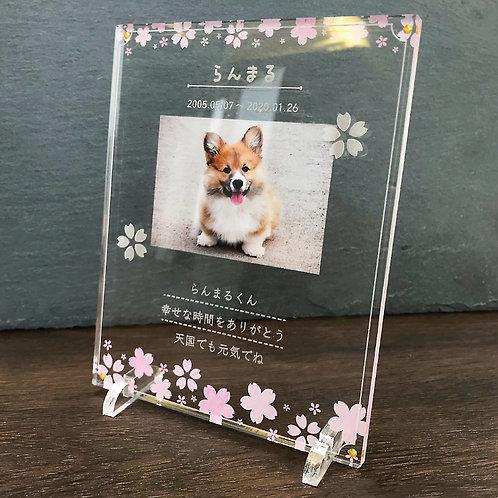 ペットフォトプレート 桜