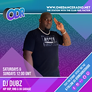DUBZ DJ TEMPLATE NEW EXAMPLE (1).png