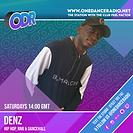 DENZ DJ TEMPLATE NEW APRIL 2021.png