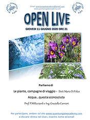 OPEN_LIVE_11giugno.jpg