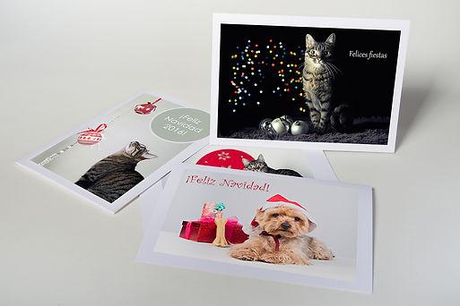 Christmas Tarjeta Flicitación Navideña Navidad Felina Canina Madrid