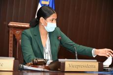 Diputados aprueban resolución que instruye a Cultura a promover y difundir el merengue