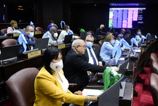 Diputados aprueban en segunda lectura ley de Certificación de Cítricos en RD