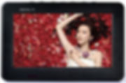 Digital Mini TV.JPG
