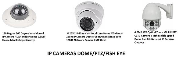 IP Cameras.png