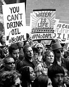 1 - You Can't Drink Oil - Fontenot (1).j