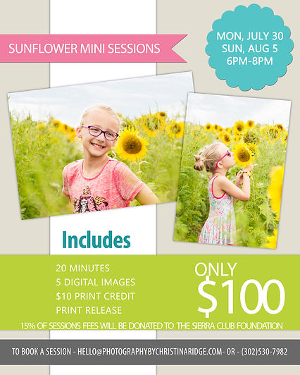 Wilmington, Delaware Spring Mini Sessons Natural Light Photographer