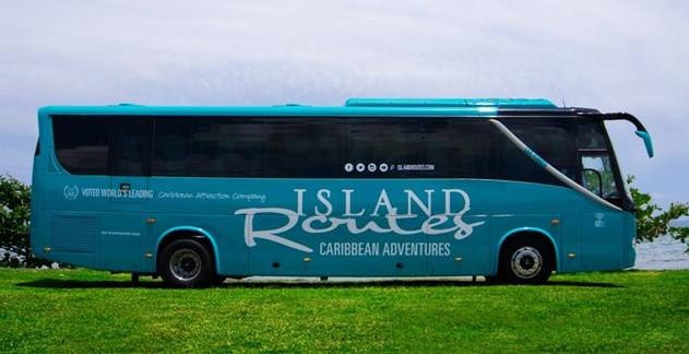 Jamaica brand new transportation buses