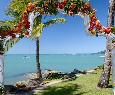 cara & loyd - australia wedding  545512.