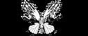 Logo_Jojolita3nb.png