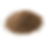 Walnut Shell .png