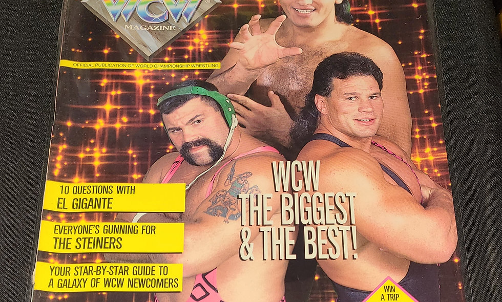 WCW Magazine : November 1991