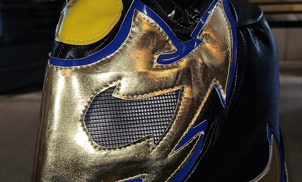 Worker Ant - Autographed Lucha Mask  : Chikara Shop