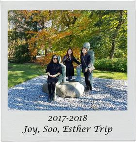 2017 joy trip.png