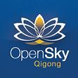 Open Sky Logo.png