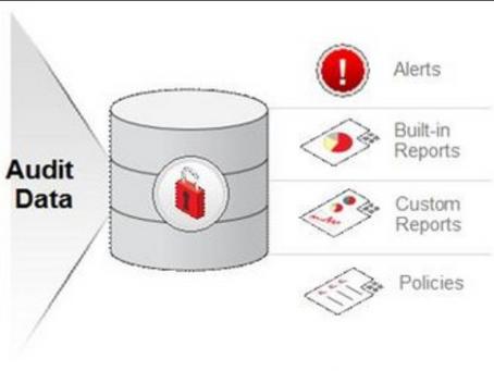 Database Audit