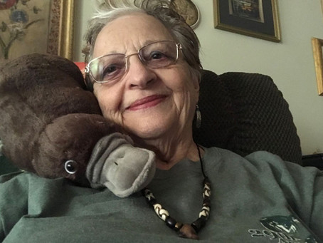 Author Signing: PADDY THE PLATYPUS By Patricia Harris