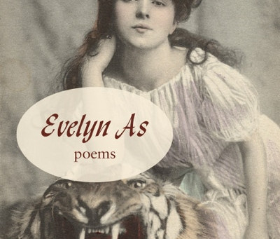 Bosslight Interview with Christine Butterworth-McDermott, Author of Evelyn As.