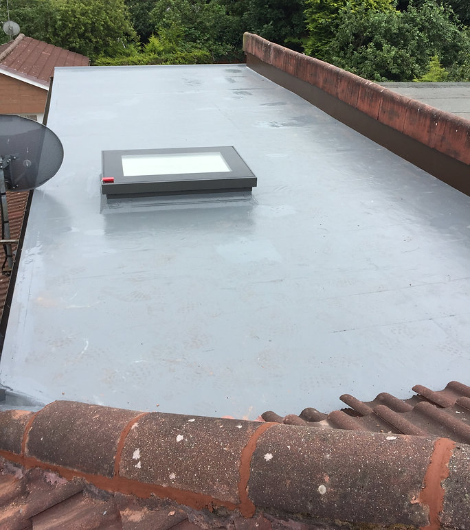 single ply  liquid roofing & mew skyligh