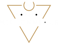 LOGO - Houston Millennials - Web.png