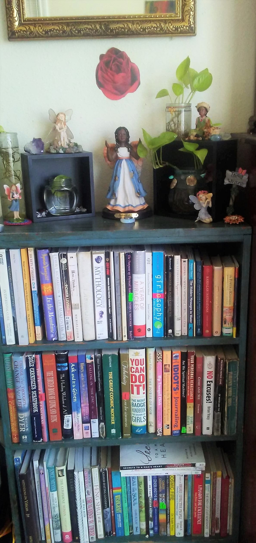 One of my four book shelves