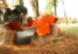 Stubbfräsning - Ta bort stubbar i Gävle, Hudiksvall, Sandviken, Söderhamn,  Nordanstig