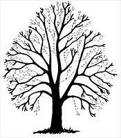 Tunna ut krona på träd i Gävle, nordanstig, hudiksvall, söderhamn, sandviken
