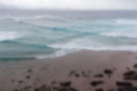 Byron Bay Wild Lather