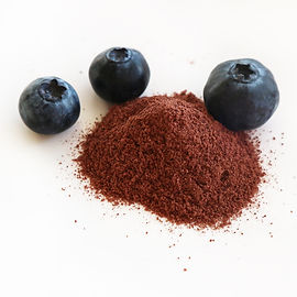 Blueberry CRUSH small fruit powder