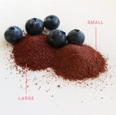 Blueberry CRUSH™